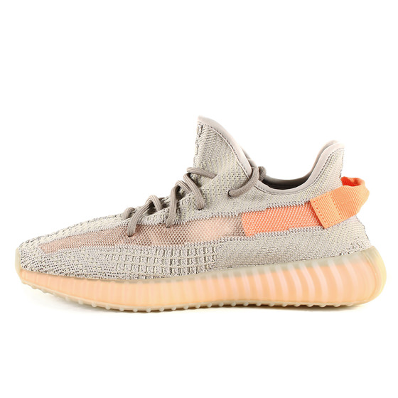 日本未発売 19SS YEEZY BOOST 350 V2 TRUE FORM (EG7492)