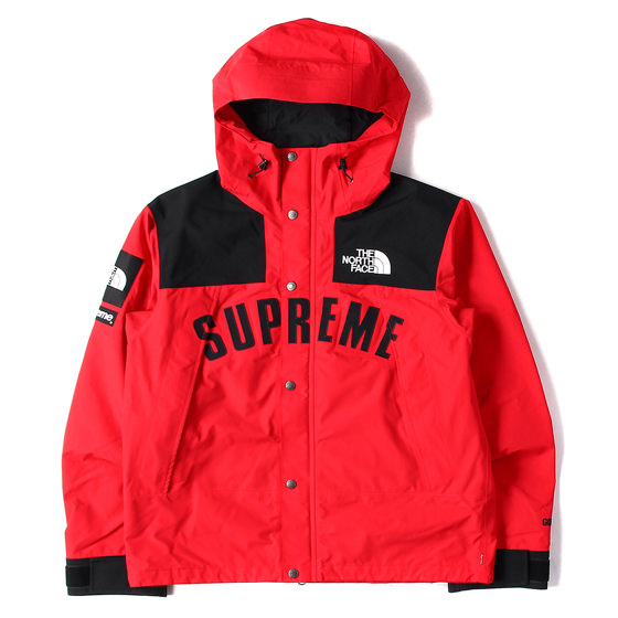 19SS THE NORTHFACE×GORE-TEX マウンテンジャケット(ARC MOUNTAIN JACKET)